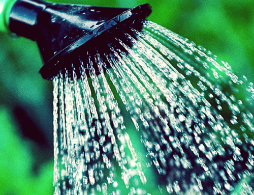 11 Super Simple Ways You Can Help with Water Conservation